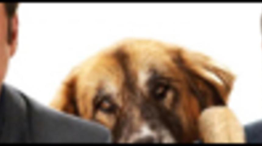 Affiche de la comédie familiale Old Dogs
