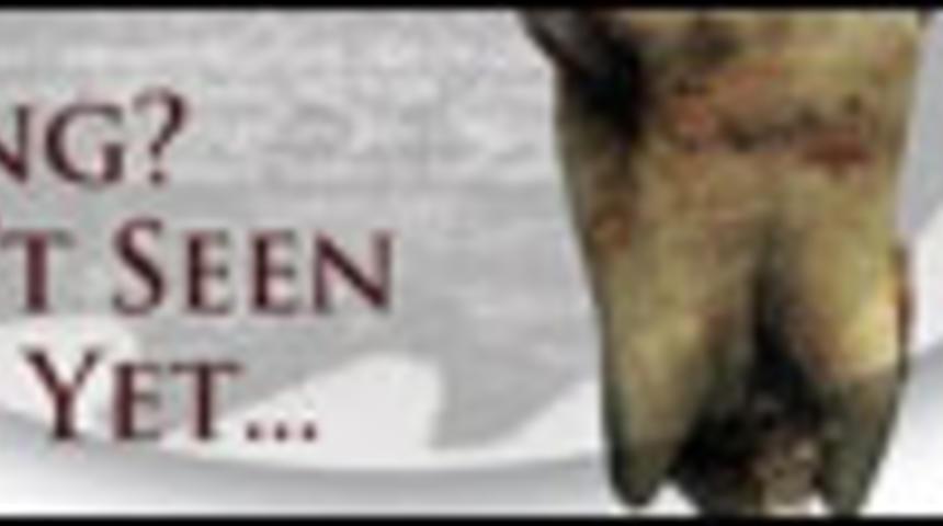 Sorties DVD : Décadence 3 et Le gardien