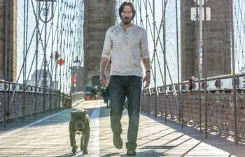 Sorties Blu-Ray et DVD : John Wick: Chapter 2