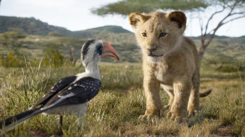 Nouveautés : The Lion King et Les fauves