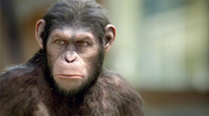 Box-office nord-américain : Rise of the Planet of the Apes tient bon