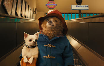 Sorties DVD : Paddington