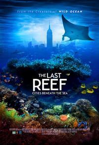 Le dernier récif