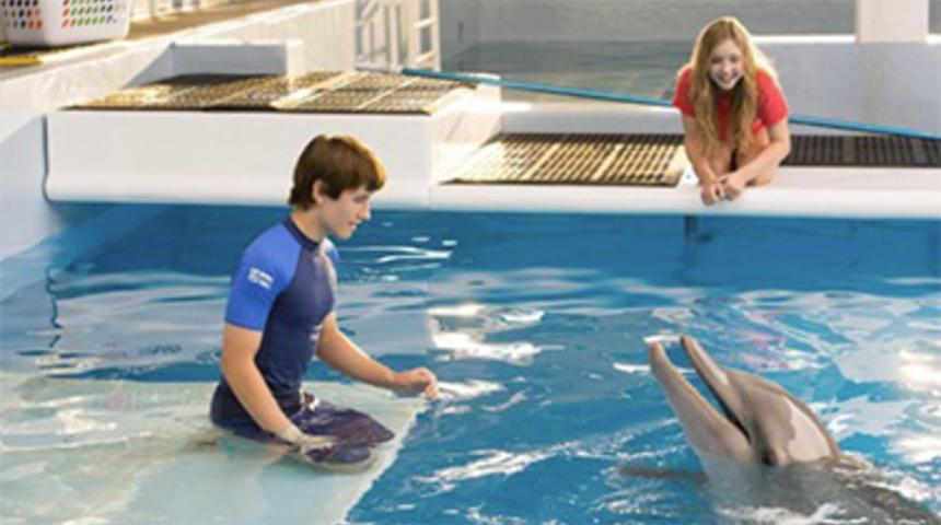 Box-office québécois : Histoire de dauphin 2 en tête